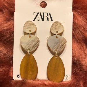 Zara Acrylic Drop Earrings